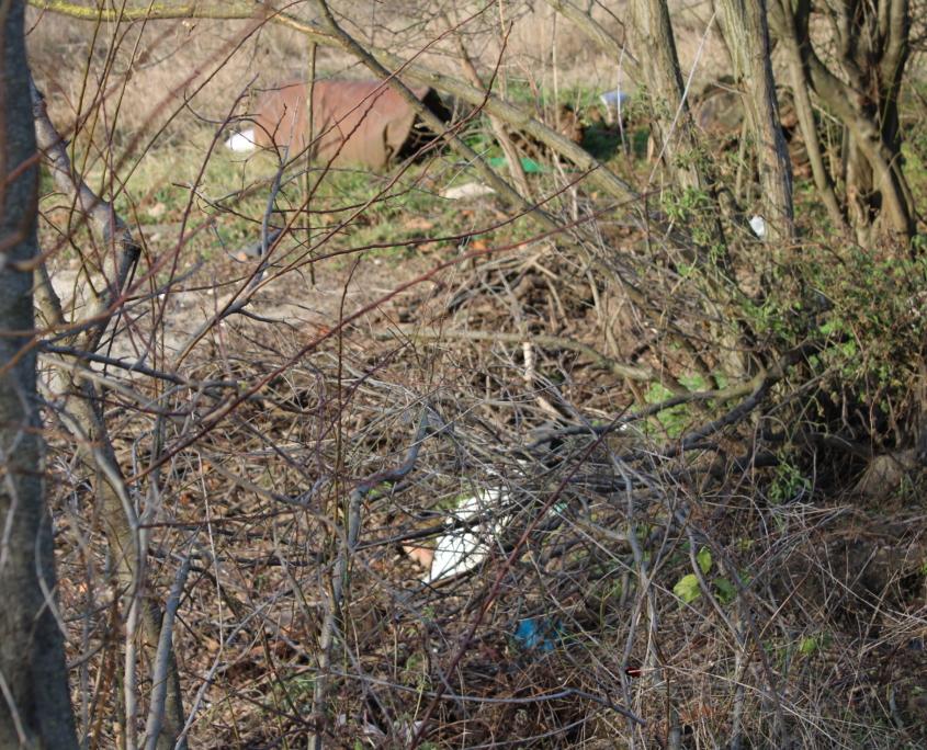 Prosinec 2019 - nepořádek na obecním pozemku u bunkru